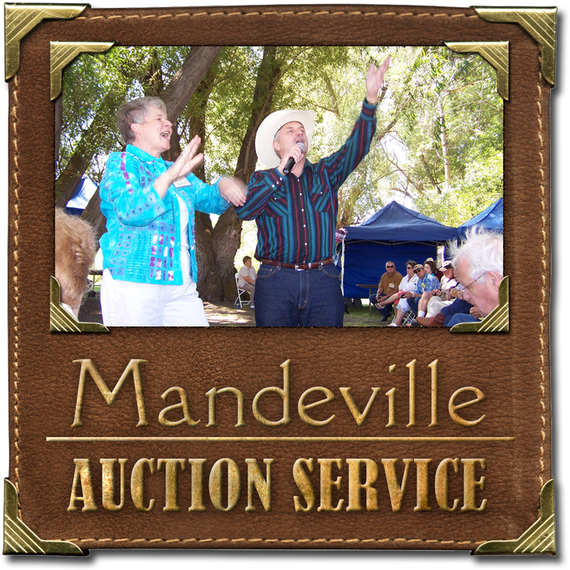 Mandeville Auction Service
